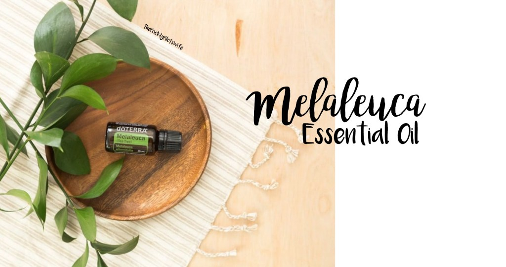 doterra melaleuca essential oil uses and benefits