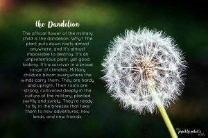 the dandelion the official flower of the military child