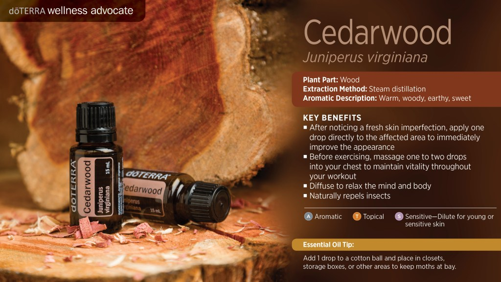 cedarwood essential oil benefits uses