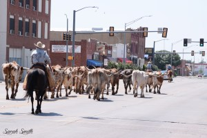 things to do in oklahoma rodeo week altus