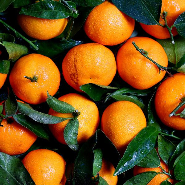 doTERRA Tangerine Essential Oil – Uses & Benefits