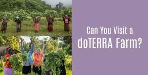 Can you visit a doTERRA farm?