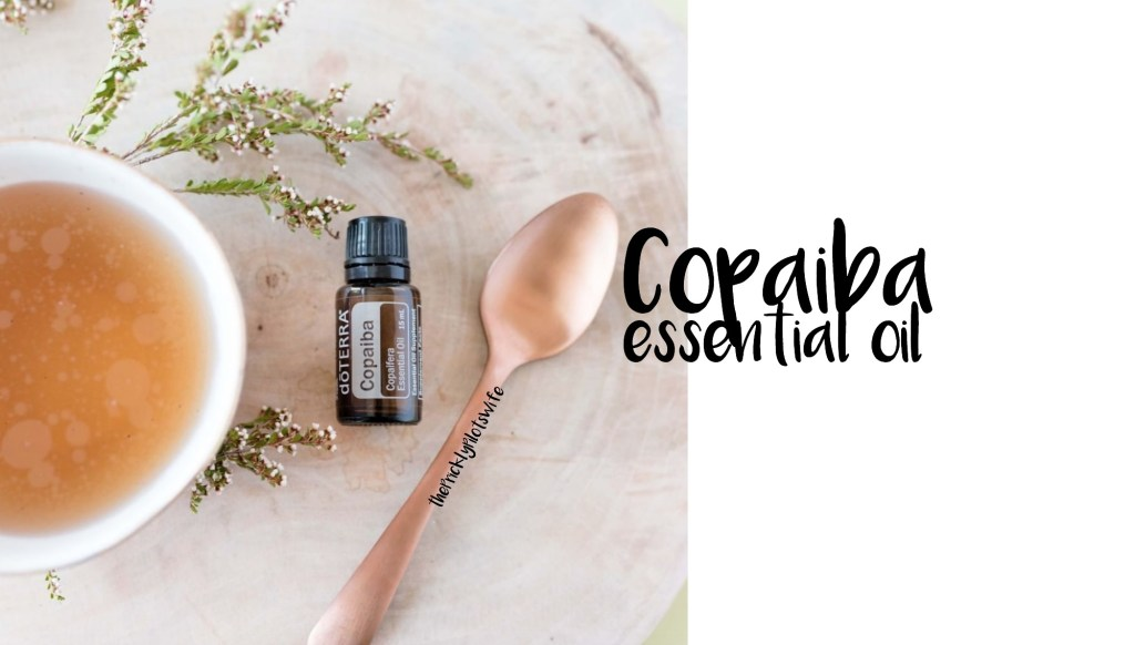 doterra copaiba essential oil uses and benefits cbd