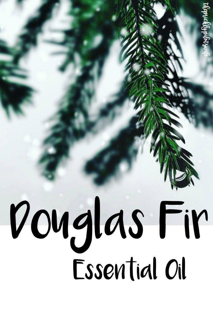 """Vertical image of a fir branch with out of focus snow falling and """"Douglas Fir Essential Oil"""" written over the image. // The Prickly Pilot's Wife"""