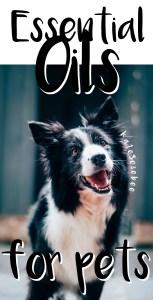 Essential Oils for Pets