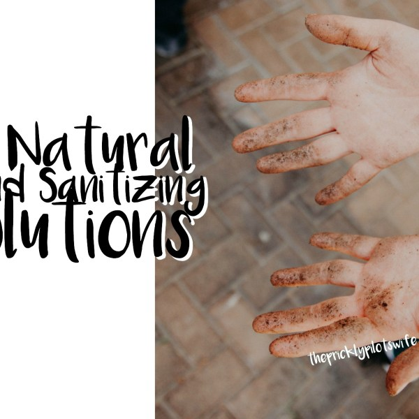 My Natural Hand Sanitizer Solutions