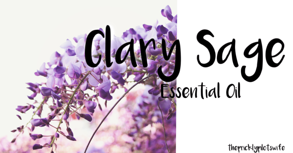 "An image of a Clary Sage plant blooming with ""Clary Sage Essential Oil"" written over the image // The Prickly Pilot's Wife"