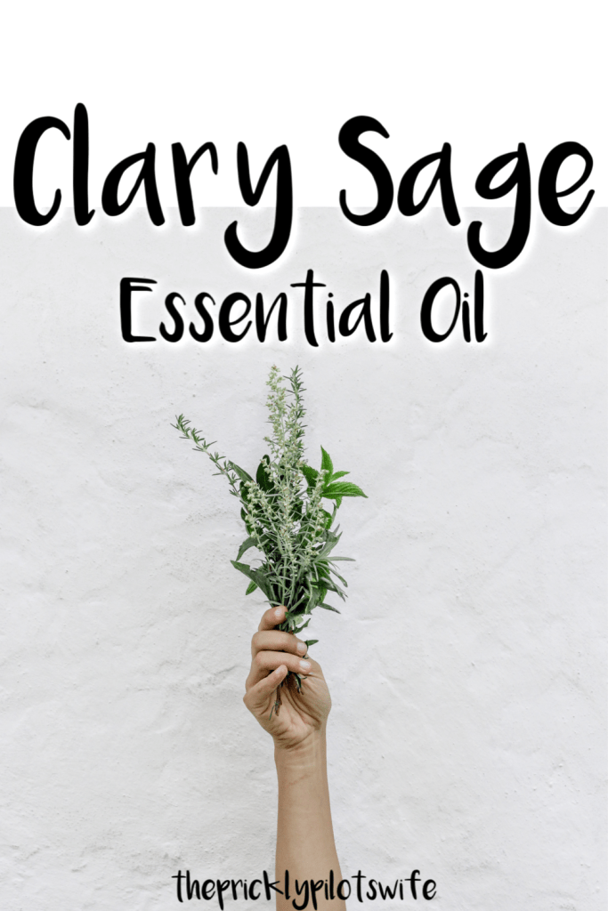 "An image of a person holding up sage in front of a white marbled background with ""Clary Sage Essential Oil"" written over the image // The Prickly Pilot's Wife"