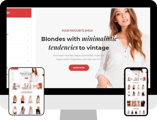 E-commerce Website The Primay