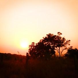 Ashtanga-Yoga-in-Goa-With-Rolf-theprimerose-photography-by-Rosa-Tagliafierro-4930