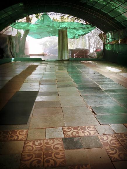 ASHTANGA YOGA AT YOGABONES  A TASTE OF PRACTICE WITH ROLF AND MARCI NAUJOKAT IN GOA  Ashtanga