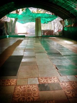 Ashtanga-Yoga-in-Goa-With-Rolf-theprimerose-photography-by-Rosa-Tagliafierro-4947