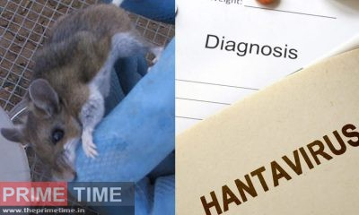 Hantavirus symptoms: Laugh virus in China after corona, know what ...