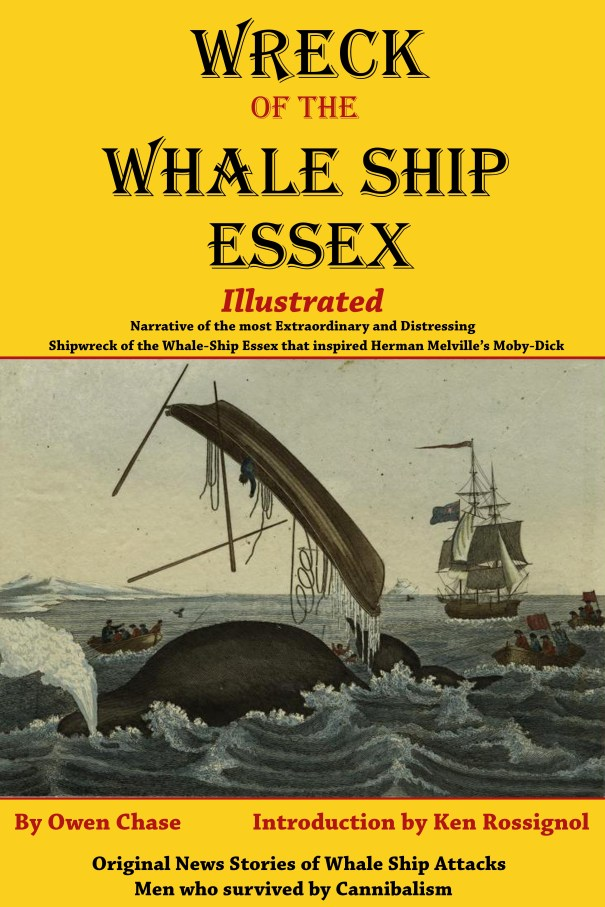Wreck of the Whale Ship Essex - Illustrated Kindle cover