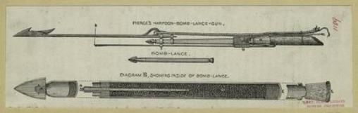 Harpoon bomb lance
