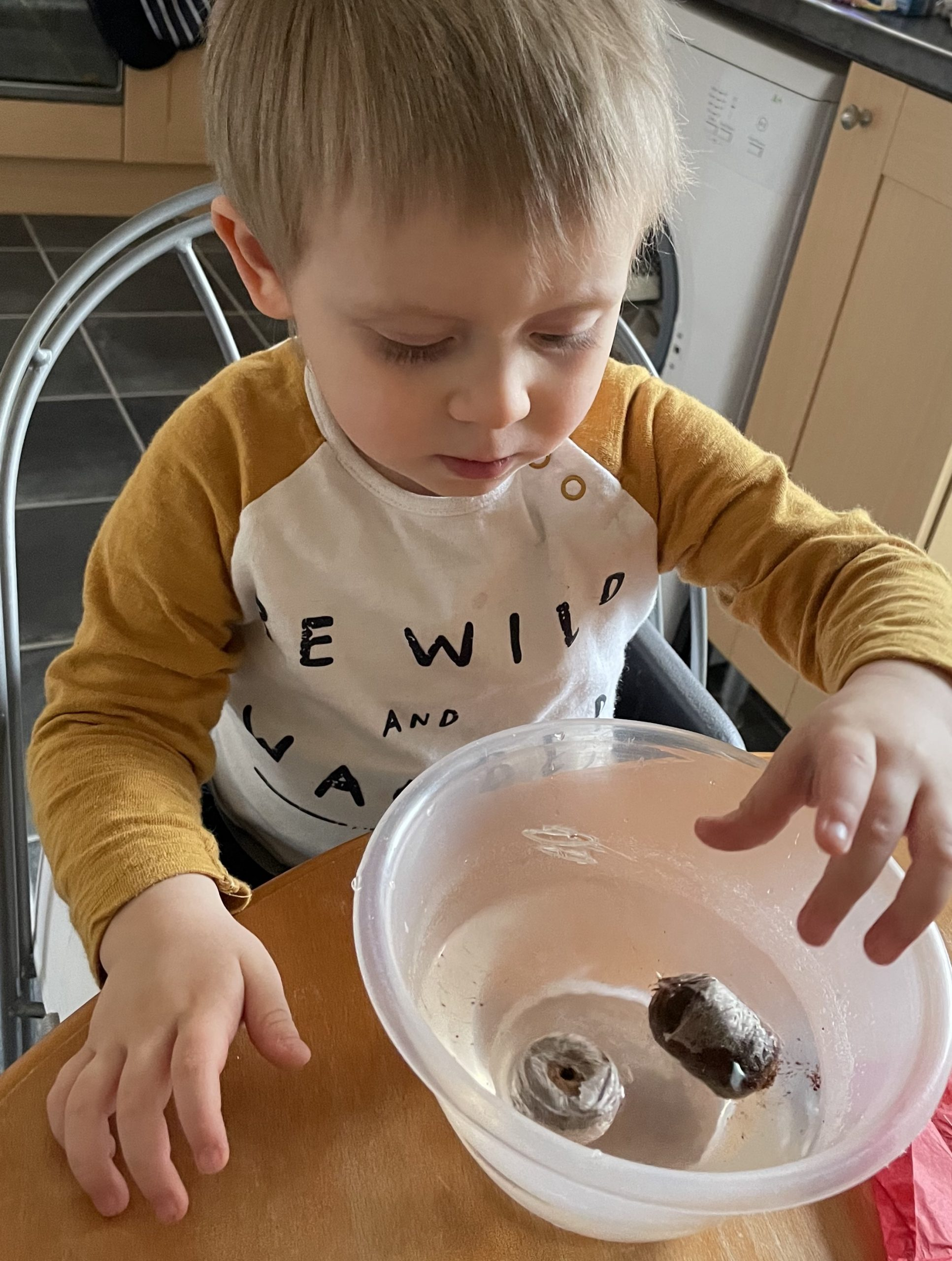 Little J is sat at a wooden table. He is wearing a white top with mustard yellow sleeves. He has a small bowl of water in front of him and he is dropping in two Compost pellets