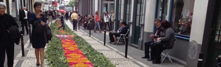 azores holidays carpet petals