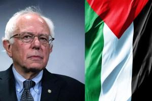 Palestinian flag-Bernie