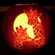 raffie in pumpkin.jpg