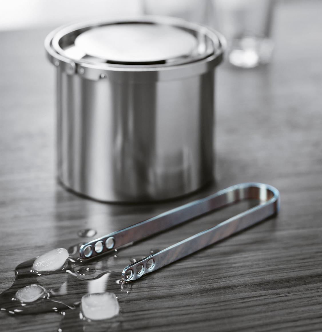 Stelton Stainless Steel Ice Tongs