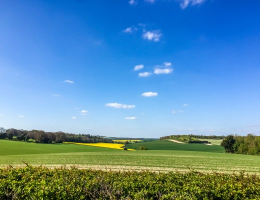 Springtime in Hampshire - The Project Lifestyle