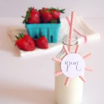 DIY Starburst Beverage Tags Made From Straws