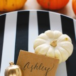 DIY \ Concrete Pumpkin Place Card Holders
