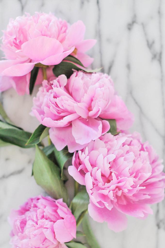 Easy Floral Centerpiece For The Non-Florist