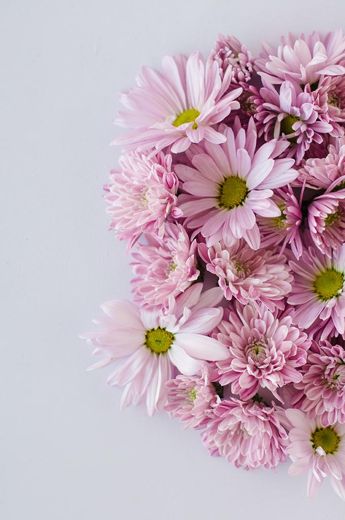 Purple Flower Wallpaper Download