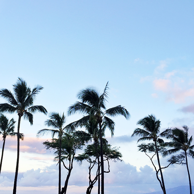 maui by @theproperblog