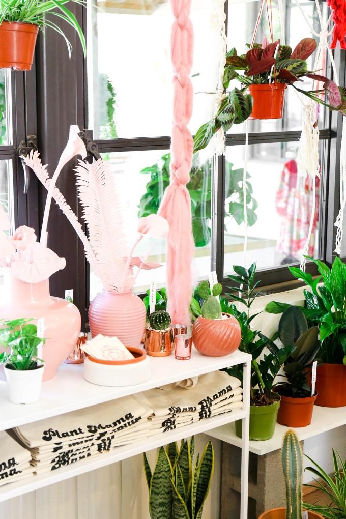 Bloom Maven Flower Shop