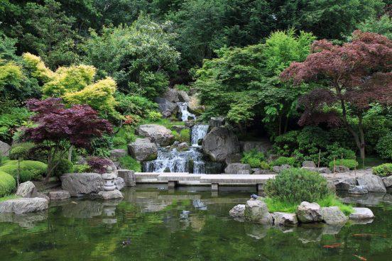 Proposing in Kyoto Gardens