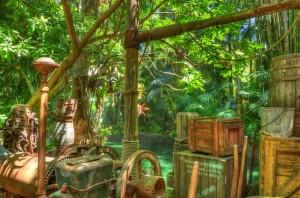 Or, had fun exploring the rainforest