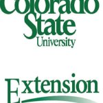 Colorado State University to Hold Wheat Planting Decision Meetings