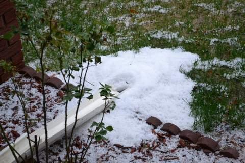 Spring Hail (3)