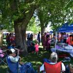 HOLLY'S 17th ANNUAL BLUEGRASS FESTIVAL - JUNE 7, 8, AND 9