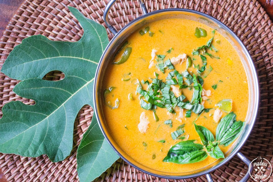 Panang Curry With Fig Leaves
