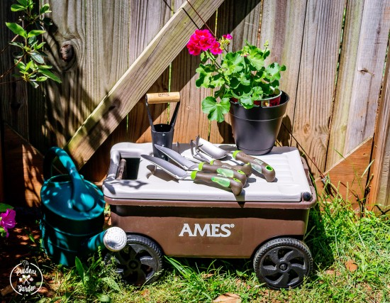 AMES Flower and Bulb Planting Collection| Mother's Day Giveaway