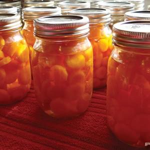 canned-carrots_growagoodlife