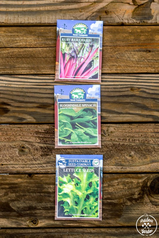 Vegetables to Plant in Your Fall Garden