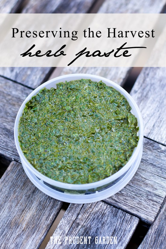 Miss having garden fresh herbs in the middle of winter? Preserve that summer herb taste in a fast and easy to make herb paste.