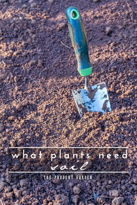 Soil is one of three essential ingredients to get plants to grow. Check out our in-depth explanation of what it takes to get great soil for the garden.