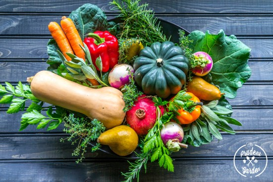 We've teamed up with Ampleharvest.org to show you have to create an edible centerpiece you can donate to a food pantry after the holiday meal.