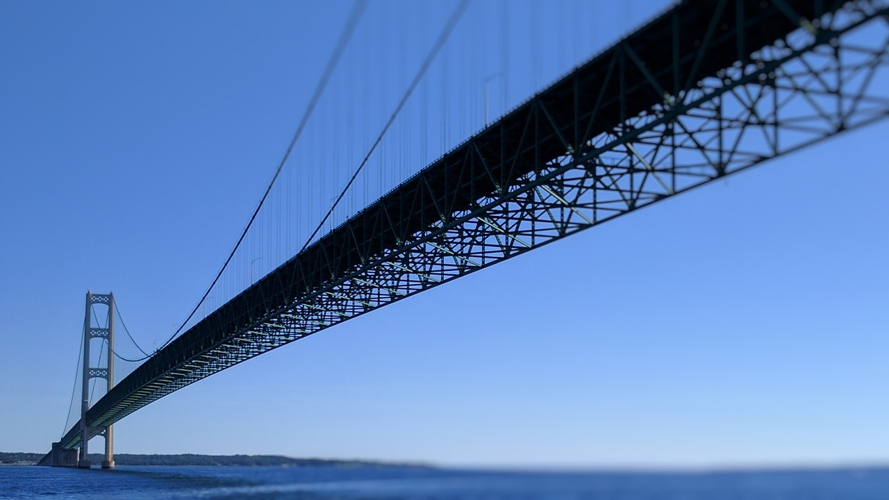 Building bridges to establish a central scholarly platform for discovery and access.jpg