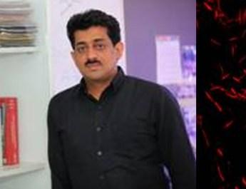 भारतीय वैज्ञानिकों के अनुसंधान से ऊर्जा एवं जैव प्रौद्योगिकी  क्षेत्र में जैव-प्रेरित सामग्रियों की संभावनाएं खुलीं