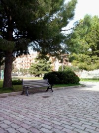 A little park near the school where I like to spend my breaks