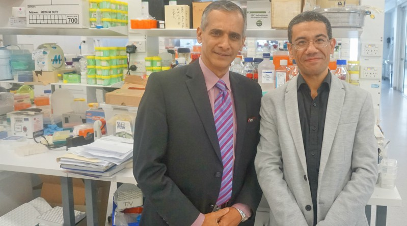 Professor Jacob George and Doctor Mohammed Eslam at the Westmead Institute have shown that variations in the interferon lambda 3 protein cause tissue damage in the liver.