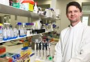 Westmead Health Precinct leads fight against antibiotic resistance with promising phage therapy
