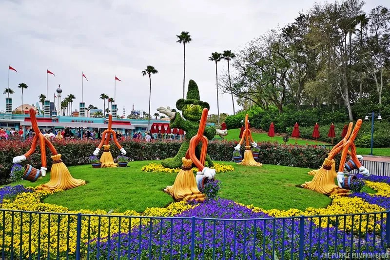 Sorcerer Mickey Topiary - Hollywood Studios
