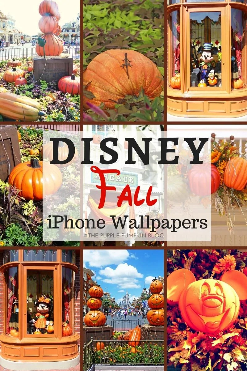 "A collage of 9 photos from Walt Disney World at fall (as described in the blog post) with text overlay that says""Disney Fall iPhone Wallpapers""."